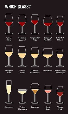 How To Sound Like A Wine Expert In 9 Basic Steps - beginner's guide to wine G. - How To Sound Like A Wine Expert In 9 Basic Steps – beginner's guide to wine Glasses - Pinot Noir, Wine Chart, Different Types Of Wine, Wine Types, Wine Folly, Wine Education, Wine Guide, Expensive Wine, Italian Wine