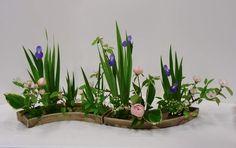 http://www.ikebana-larochelle-sudouest.com/IMG/jpg/Cerisiers-2011-04.jpg