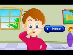 This animated lesson is designed to teach kids about the five senses. For more educational games and videos visit www.turtlediary.com