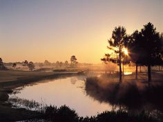 Golf anyone? Craft Farms has several special for Beach Sharks. Play two 18-hole rounds of golf at Craft Farms (Cotton Creek or Cypress Bend) for only $139+tax per player. Valid until October 31, 2013.