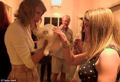 Meet Olivia Benson: The let one lucky fan stroke her cute cat Taylor Swift House, Taylor Swift Fan Club, Taylor Alison Swift, Taylor Songs, Live Taylor, Olivia Benson, Meredith Grey, Taylor Swift Pictures, Her Music