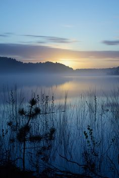 *Dawn at National Park Hoge Kempen (by Sandro Meersman)