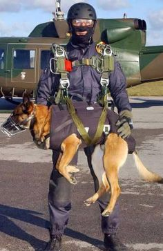 "Cairo ... a HERO in EVERY sense of the word!  He is a military ""war dog"" who was a member of the Navy SEAL team who took out binLaden!"