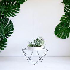 beautiful leaf design