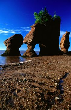 Bay of Fundy, the tide will come up almost above the rocks at high tide #travel