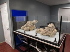 Aquascaping, Show your Skills... - Page 34 - Reef Central Online Community