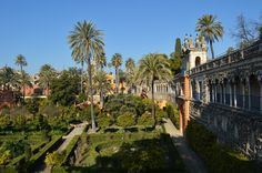"""See 1539 photos from 26227 visitors about spain, tapas, and beautiful city. """"A wonderful city in Andalusia famous for its Flamenco shows, tapas and. Andalusia, Seville, Spain, Architecture, City, Travel, Beautiful, Flamingo, Voyage"""