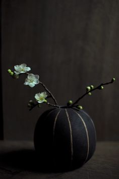 Komae, Japan . . . Simplicity (sigh) -- because elegance derives from metaphor, where less can be more.