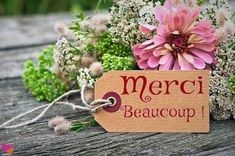 Messages to say thank you and thank you quote - Message Pour Dire Merci, Winnie The Pooh Quotes, Thank You Quotes, Messages, Be Yourself Quotes, Arts And Crafts, Lily, Place Card Holders, Christmas Ornaments
