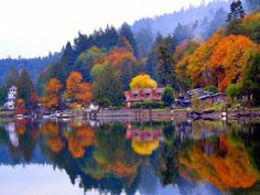 Fall colours at Maple Bay, Cowichan Valley, Vancouver Island, BC.