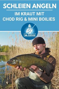 Carp, Mini, Fishing, Other, Common Carp, Peaches, Pisces, Gone Fishing