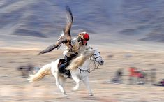 Mongolia Eagle Hunter - National Geographic Photo Contest 2012 ...