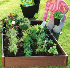 """This is what I want to start off with! Pinner: """"Garden box - perfect for a backyard herb garden."""""""