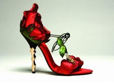 red rose shoe