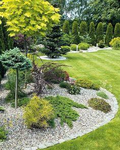 Backyard Garden Design, Garden Landscape Design, Gravel Garden, Lawn And Garden, Small Gardens, Outdoor Gardens, Evergreen Garden, Casa Patio, Front Yard Landscaping