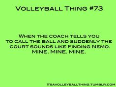 It's a Volleyball Thing #73.