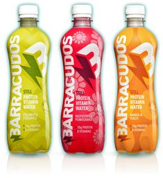 Protein Vitamin Waters - Barracudos' Products Hydrate, Fight Fatigue and Aid With Muscle Recovery (VIDEO)