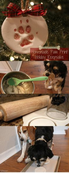 A DIY dog craft paw print keepsake that you will cherish for generations! Makes a great dog Christmas gift and Christmas decoration! So easy to make, Instructions here: http://blog.radiofence.com/?p=3668