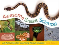 Awesome Snake Science! 40 Activities for Learning About Snakes by Cindy Blobaum