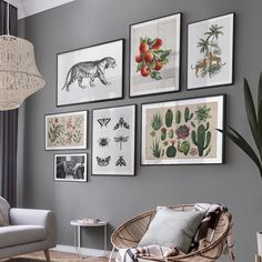 Posters with vintage illustrations and photographs for your living room or study #artprints #posters #walldecor #wallart #poster #frames #interior #inspiration