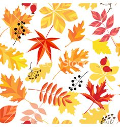 Autumn leaves pattern vector - by fireflamenco on VectorStock®