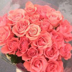 {bouquet}