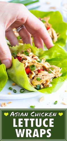 This Asian Chicken Lettuce Wraps recipe is a healthy, easy, gluten-free, and low-carb lunch or dinner recipe that does not require any cooking! Healthy Low Carb Recipes, Healthy Dinner Recipes, Paleo Recipes, Asian Recipes, Crockpot Recipes, Chicken Recipes, Ethnic Recipes, Healthy Chicken, Lunch Recipes