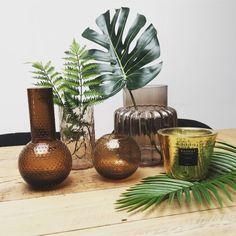 Mix and Match de vases, bougies et plantes tropicales Vases, Mood, Home Decor, Round Vase, Tropical Plants, Candles, Stuff Stuff, Interior Design, Home Interior Design
