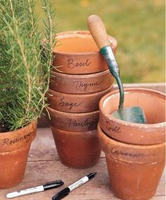 Label rim of pots with name of herb.