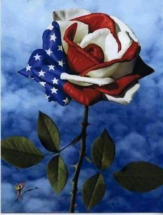 Red white and blue rose art for memorial day. Betty Boop, I Love America, God Bless America, America 2, Happy 4 Of July, 4th Of July, September 11, Memorial Day, Patriotic Pictures