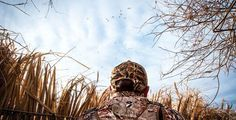 How Ducks See: The Science Behind Waterfowl Eyesight sitting is the new smoking tips Quail Hunting, Waterfowl Hunting, Trophy Hunting, Hunting Tips, Duck Hunting, Hunting Art, Hunting Stuff, Susquehanna River, Duck Season