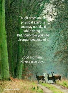 Good Morning Quotes New Day Quotes Funny Funny Good Morning Messages, Good Morning Quotes For Him, Good Morning Inspirational Quotes, Good Morning Funny, Good Morning Good Night, Good Morning Wishes, Morning Humor, Beautiful Morning Quotes, Morning Pics