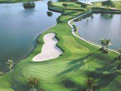 Drive along the Southwest Florida coast, where quality courses, top architects and great resorts reflect the area's passion for golf.
