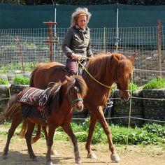 Mir Pferden in Kreta, Programme für therapeutisches Reiten. www.hellasaufdeutsch.com