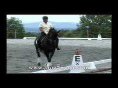 http://www.janesavoie.com/ Classical Dressage Riders Jane Savoie and Ruth Poulsen describe what went into their Program Your Position Tips DVD and CD set