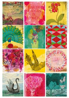 Sweet William illustrations  Bright Floral by lovelysweetwilliam, $4.50