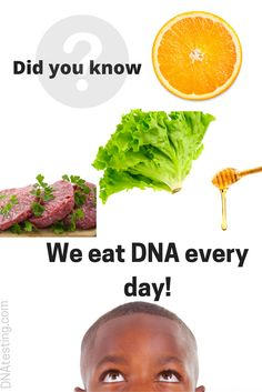 Did you know we eat DNA every day? Any food, plant or animal, that was once living has DNA in it.