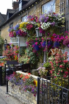 Flowers galore in a front garden in the village of Bampton, Oxfordshire, England. The 'Downton Abbey Village'