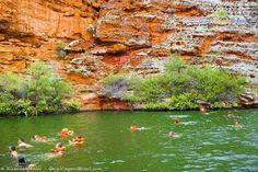 Nadar nas águas esverdeadas do Rio São Francisco é o ponto alto do passeio ao Cânion do Xingó >>> http://www.guiaviagensbrasil.com/blog/canion-do-xingo/