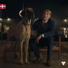 Danish style tip It's not about trends, it's about a look… Mads Mikkelsen, Hannibal Funny, International Dog Day, Hannibal Tv Series, Addicted To Love, Francis Dolarhyde, Daddy Long, Star Wars, Danish Style