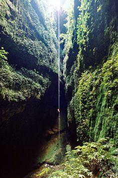 Lost World, Waitomo Caves, North Island, New Zealand.