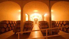 Sala de Barricas de Bodega Palacio Quemado #enoturismo #Extremadura