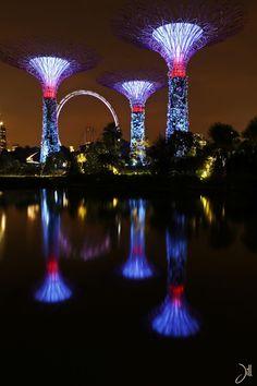 Travel advice: Singapore
