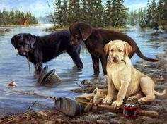 Another great hunting dog puppy print--GONE FISHIN' by James Killen. A yellow lab, a chocolate lab, a black lab puppy have made a mess of some fishing gear. Labrador Retrievers, Retriever Puppies, Labrador Puppies, Mastiff Puppies, Cavapoo Puppies, Hunting Art, Hunting Dogs, Black Lab Puppies, Dogs And Puppies