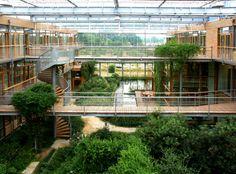 Behnisch Architekten / IBN – Institute for forestry and nature research