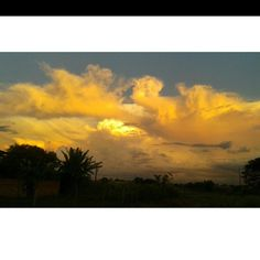 Photo day 14.04.15. 17:29 pm Era posicionar a câmera e dava esse efeito! Sem Filtro!  #Sunset #Pretty #Beautiful #Nature #NoFilter #Clouds #Sky #Céu #Sol #PorDoSol #Brazil #MatoGrossoDoSul #Amazing #Grace #Natureza #Landscape #handsome #places #World #Travel #Trees #Explosion #Hot #Deus #Eternidade #Lindo #Paradise #Criation #freedom #Garden