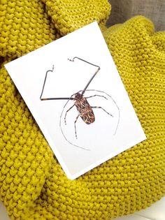 hagedornhagen's exclusive postcards 12 pieces. in size A6 (10.5x14 cm) - inclusive 8 envelopes in beautiful folder. http://Houseofbk.com/Shop/Product/?shopid=827&product=157140 #artprints  #postcards #hagedornhagen #houseofbk