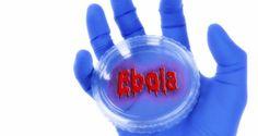 Ebola in India: Karnataka minister files complaint against Ebola rumours shared on WhatsApp  Shraddha Rupavate August 22, 2014 at 11:02 am