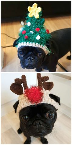 These Crochet Christmas Dog Hats are perfect for the Holidays and they are so much fun. Crochet Christmas Hats, Halloween Crochet, Crochet Hats, Reindeer Hat, Snowman, Crochet Dog Clothes, Christmas Specials, Christmas Puppy, Christmas Accessories