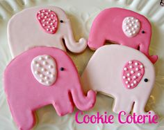 Baby Elephants Decorated Sugar Cookies Cookie Favors One Dozen